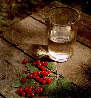 23668801_1193764604_vodka_005