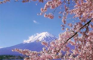 japan_mt_fuji