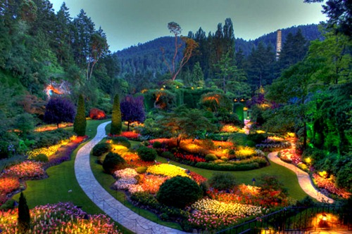 сады бутчартов